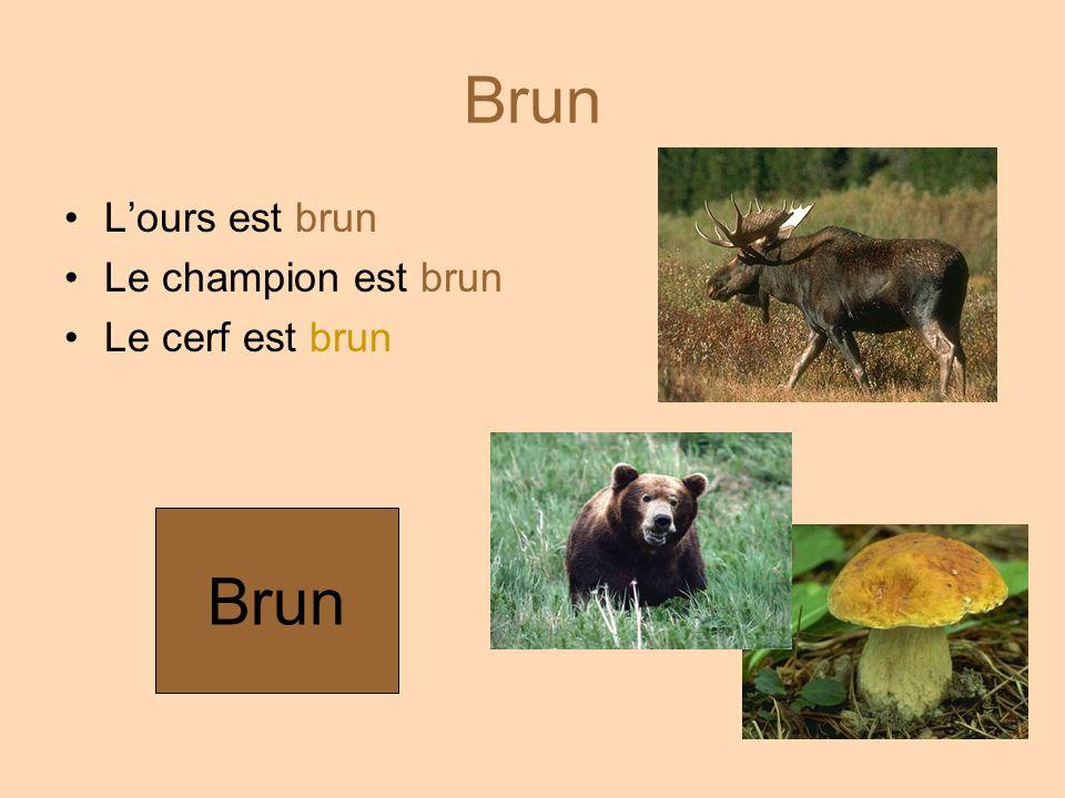 Brun L'ours est brun Le champion est brun Le cerf est brun Brun
