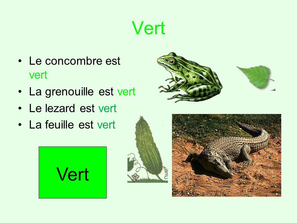 Vert Le concombre est vert La grenouille est vert Le lezard est vert La feuille est vert Vert
