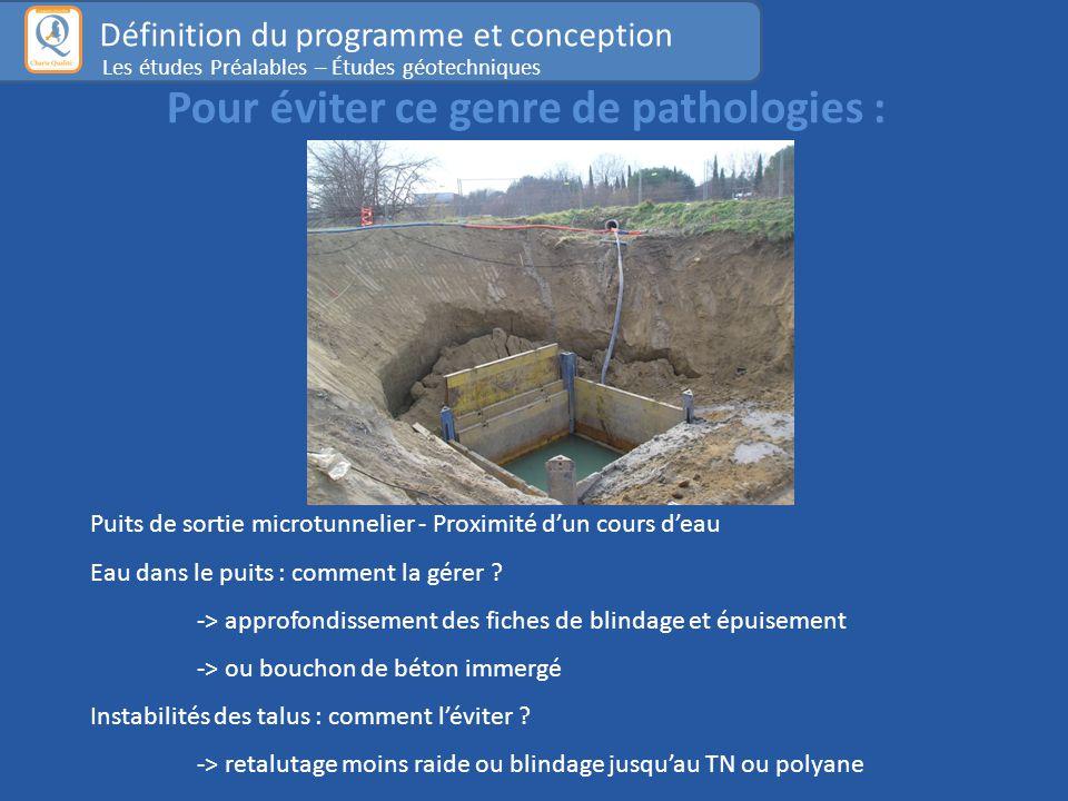 Pour éviter ce genre de pathologies : Puits de sortie microtunnelier - Proximité d'un cours d'eau Eau dans le puits : comment la gérer .