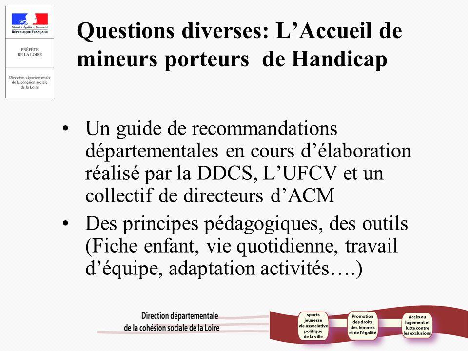 Questions diverses: L'Accueil de mineurs porteurs de Handicap Un guide de recommandations départementales en cours d'élaboration réalisé par la DDCS,