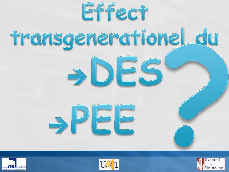 Malformations génitales Baisse de la spermatogénèse Cancer du testicule Infertilité