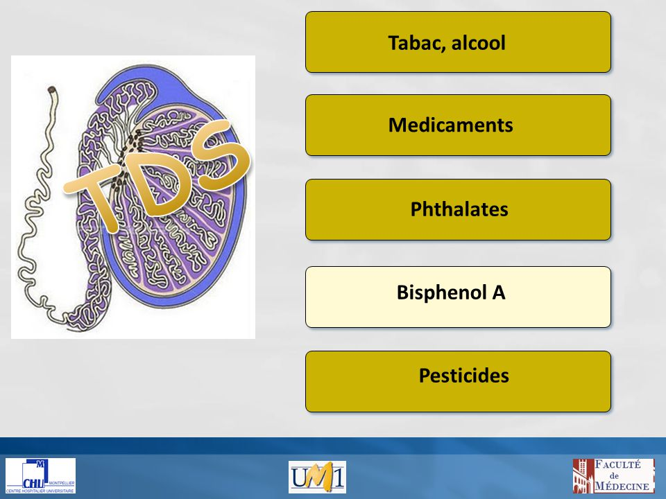 Tabac, alcool Medicaments Phthalates Bisphenol A Pesticides