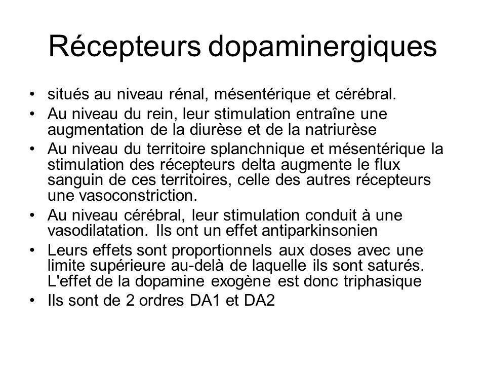 Récepteurs dopaminergiques situés au niveau rénal, mésentérique et cérébral. Au niveau du rein, leur stimulation entraîne une augmentation de la diurè