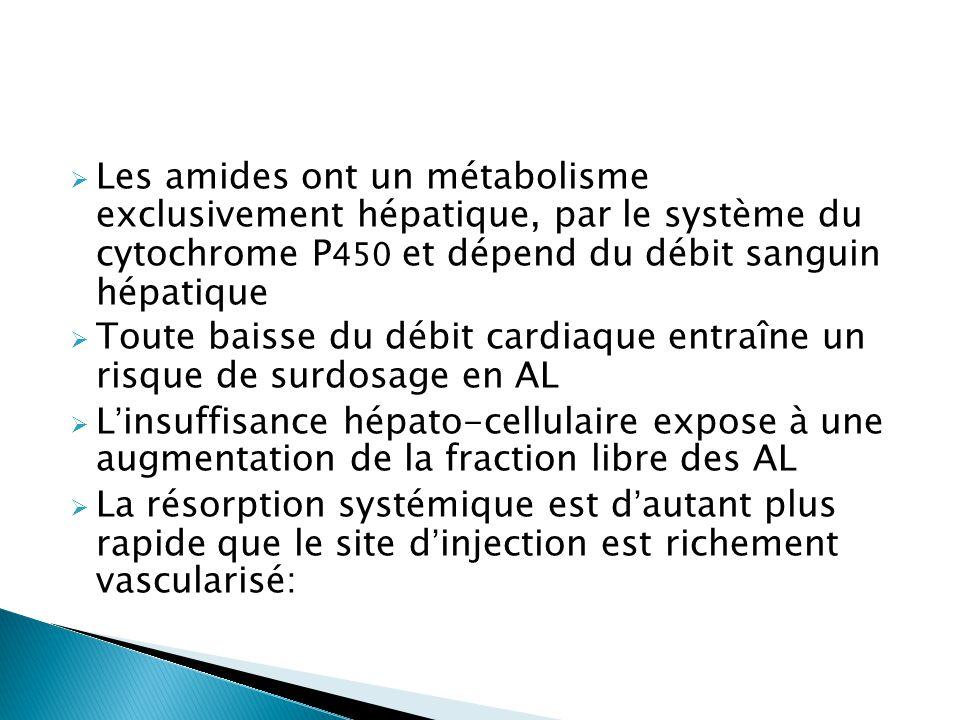  Les amides ont un métabolisme exclusivement hépatique, par le système du cytochrome P 450 et dépend du débit sanguin hépatique  Toute baisse du déb