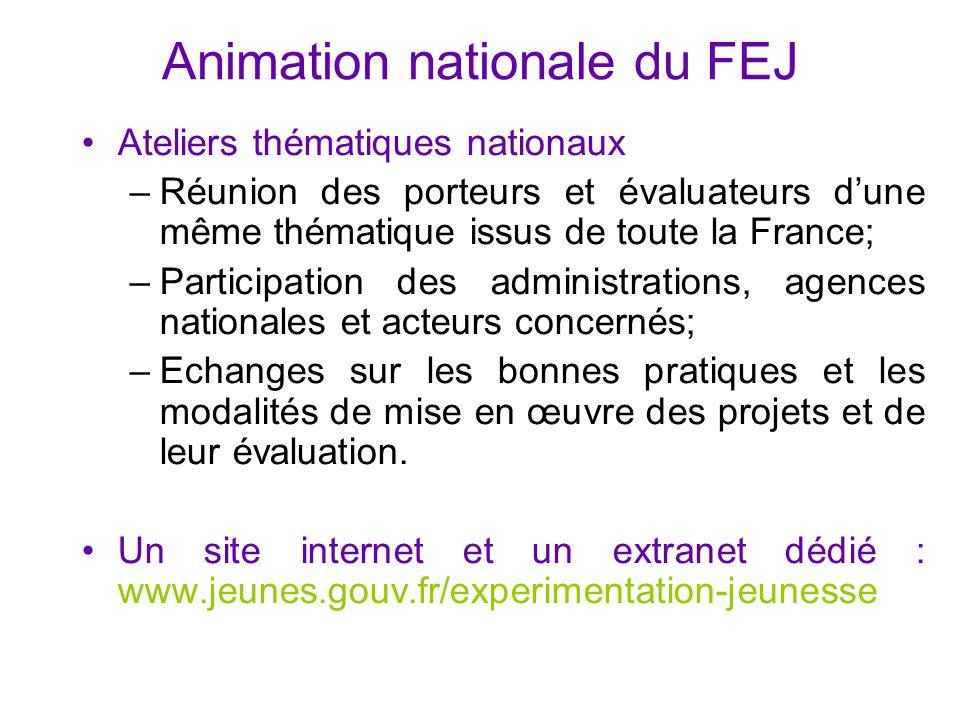 Animation nationale du FEJ Ateliers thématiques nationaux –Réunion des porteurs et évaluateurs d'une même thématique issus de toute la France; –Partic