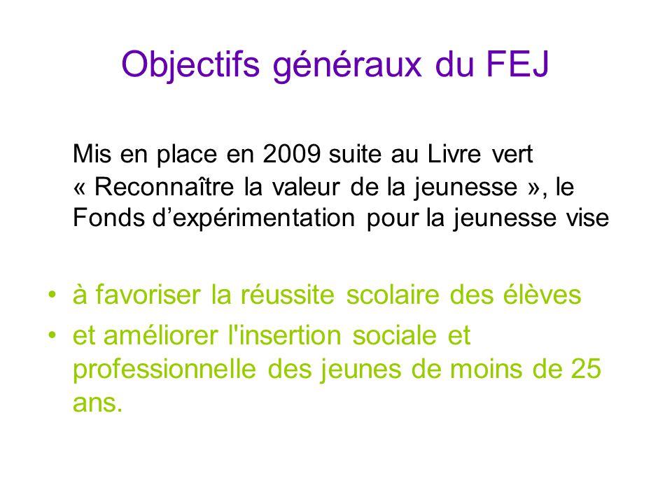 Objectifs généraux du FEJ Mis en place en 2009 suite au Livre vert « Reconnaître la valeur de la jeunesse », le Fonds d'expérimentation pour la jeunes