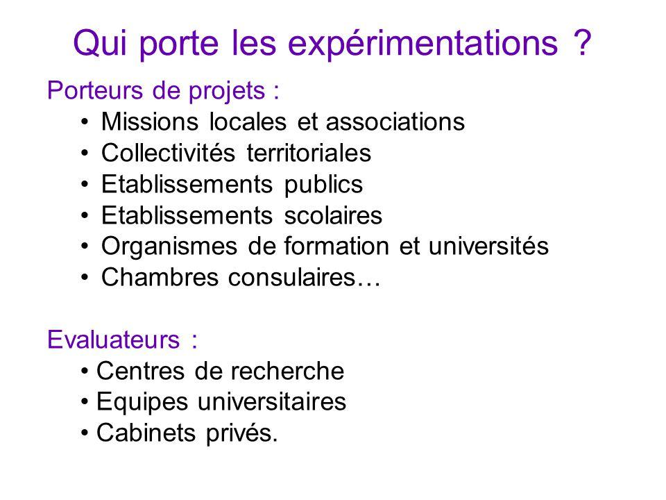 Qui porte les expérimentations ? Porteurs de projets : Missions locales et associations Collectivités territoriales Etablissements publics Etablisseme