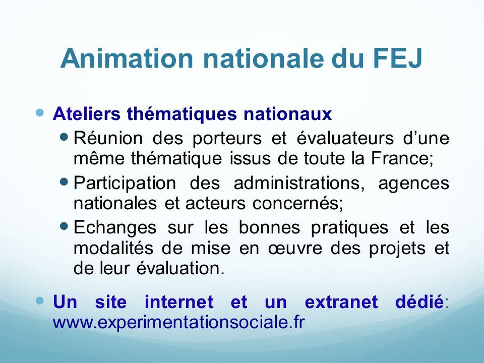 Animation nationale du FEJ Ateliers thématiques nationaux Réunion des porteurs et évaluateurs d'une même thématique issus de toute la France; Particip
