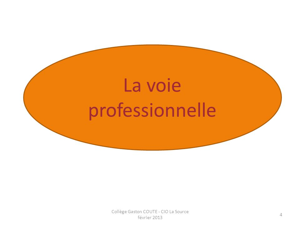 Collège Gaston COUTE - CIO La Source février 2013 4 La voie professionnelle