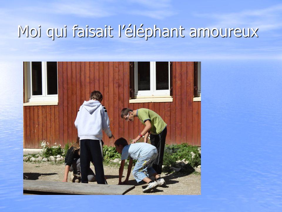 Moi qui faisait l'éléphant amoureux