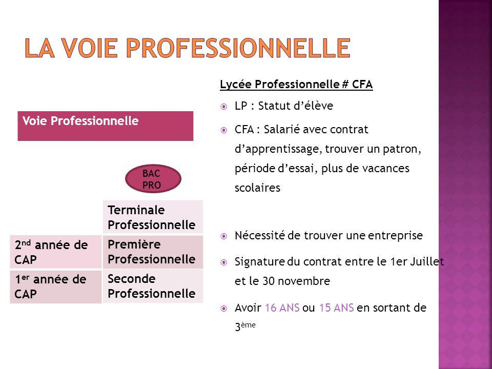 Lycée Professionnelle # CFA  LP : Statut d'élève  CFA : Salarié avec contrat d'apprentissage, trouver un patron, période d'essai, plus de vacances s