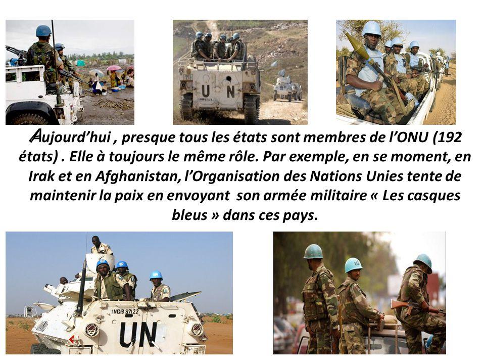 C'est l'organe exécutif de l'ONU. Il a « la responsabilité principale du maintien de la paix et de la sécurité internationale »