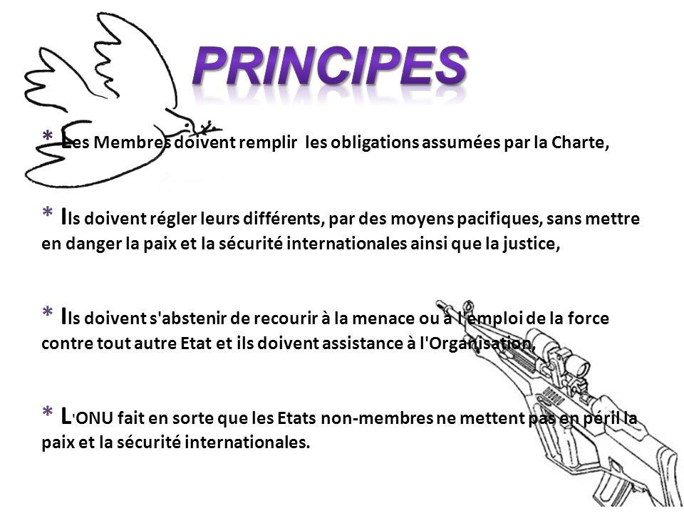 Les buts de l'ONU Développer le respect des droits de l'homme et des libertés fondamentales. Constituer un centre où s'harmonisent les efforts des nat