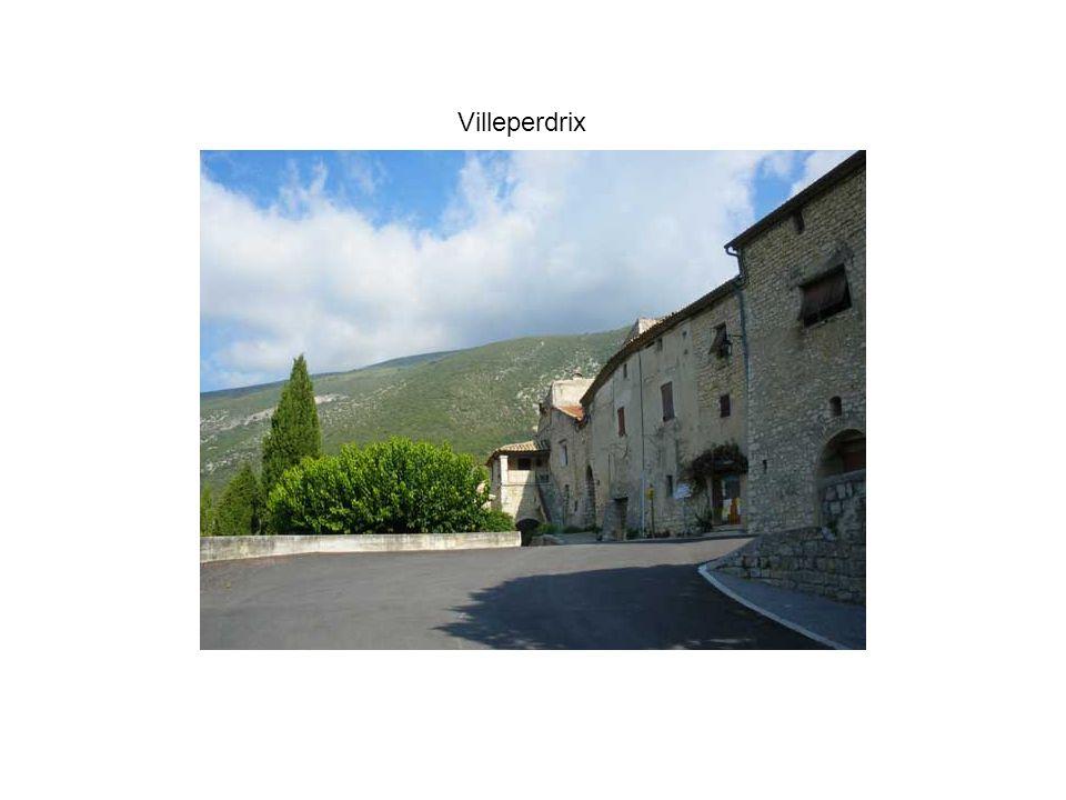 Villeperdrix