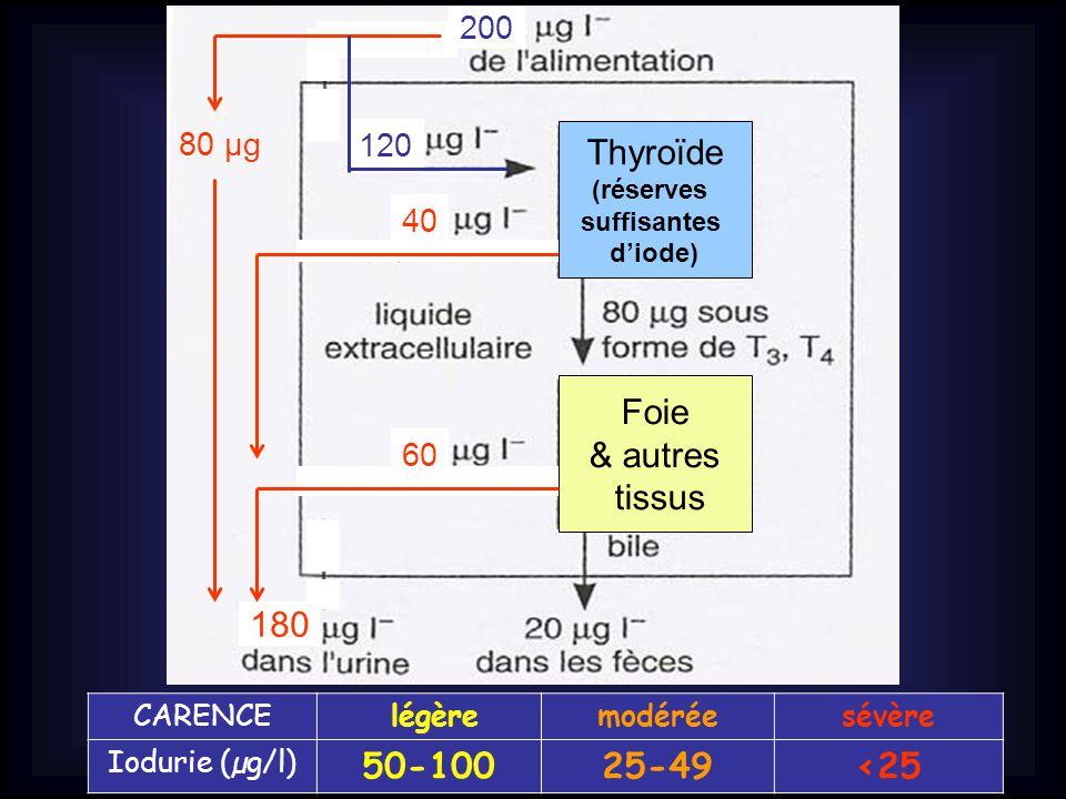 80 µg 200 180 Thyroïde (réserves suffisantes d'iode) Foie & autres tissus 120 40 60 CARENCE légèremodéréesévère Iodurie (µg/l) 50-10025-49<25