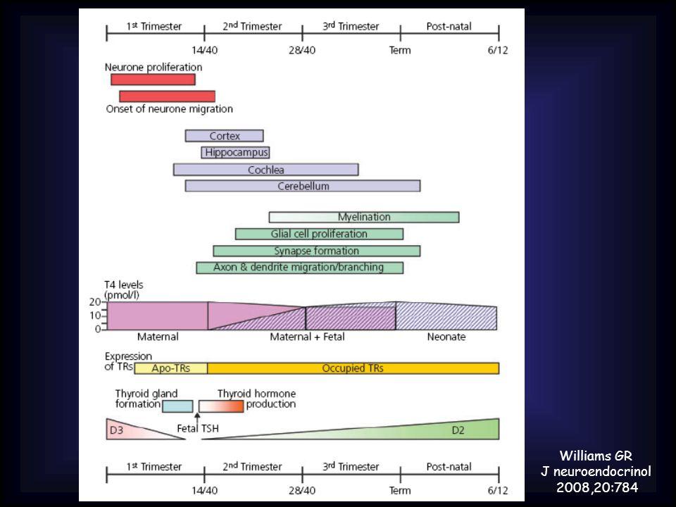 Williams GR J neuroendocrinol 2008,20:784