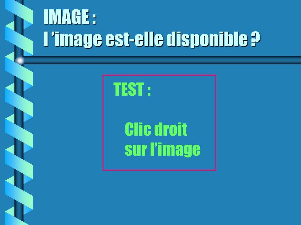 IMAGE : l 'image est-elle disponible ? TEST : Clic droit sur l'image