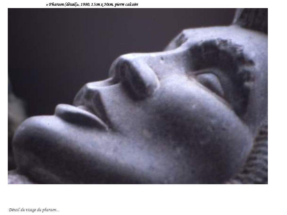 « Pharaon (détail)», 1980, 15cm x 30cm, pierre calcaire Détail du visage du pharaon...
