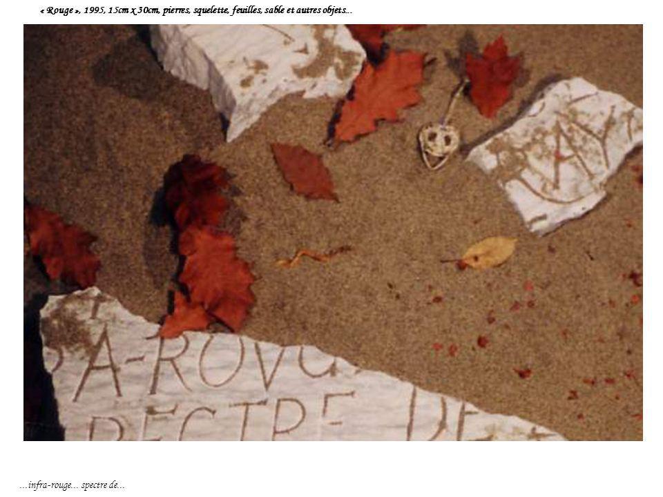 « Rouge », 1995, 15cm x 30cm, pierres, squelette, feuilles, sable et autres objets......infra-rouge... spectre de...
