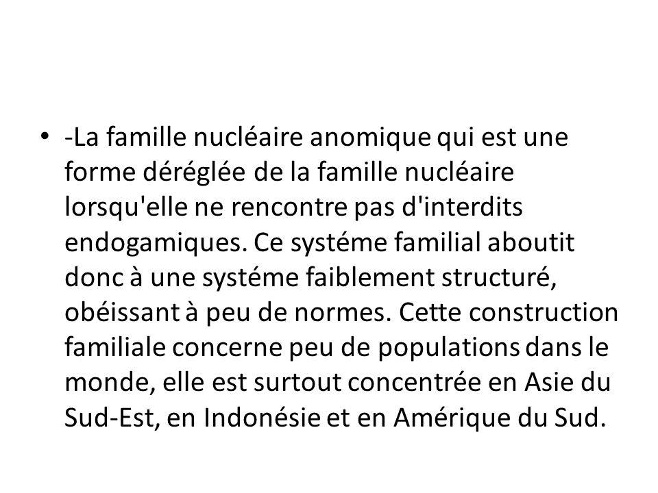 -La famille nucléaire anomique qui est une forme déréglée de la famille nucléaire lorsqu'elle ne rencontre pas d'interdits endogamiques. Ce systéme fa