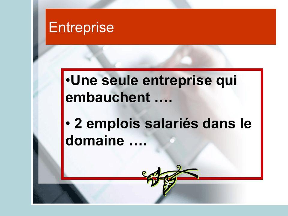 Entreprise Une seule entreprise qui embauchent …. 2 emplois salariés dans le domaine ….