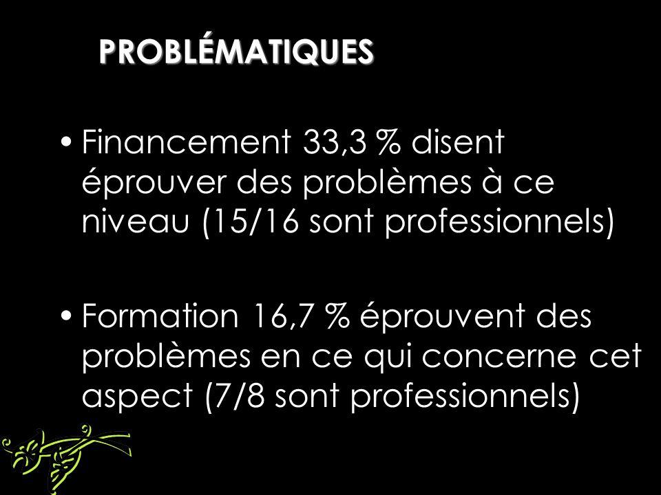 PROBLÉMATIQUES Financement 33,3 % disent éprouver des problèmes à ce niveau (15/16 sont professionnels) Formation 16,7 % éprouvent des problèmes en ce