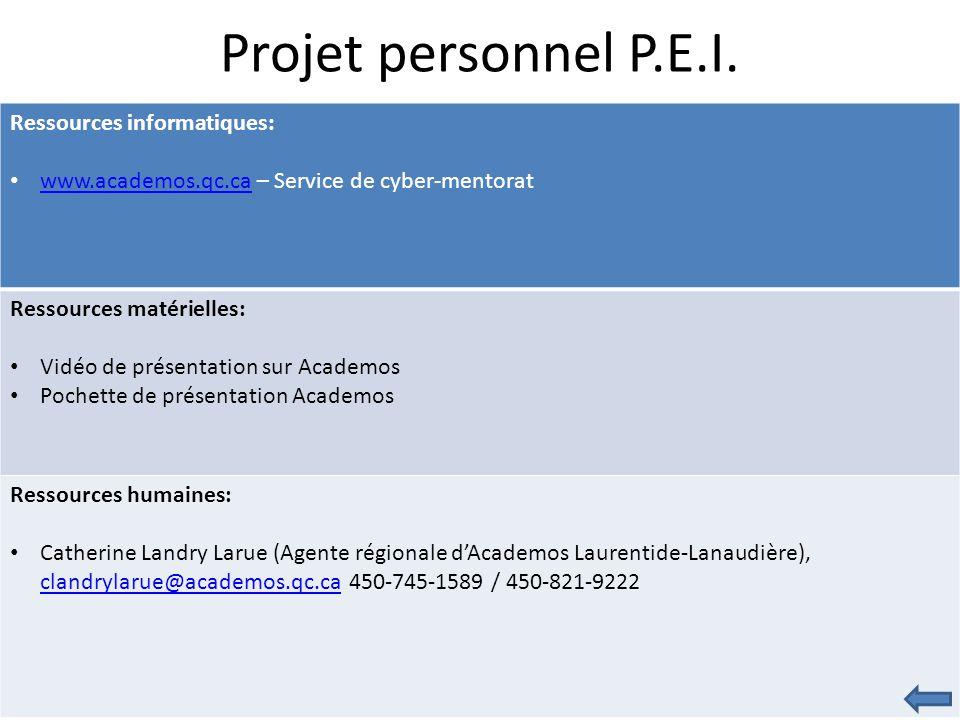 Projet personnel P.E.I.