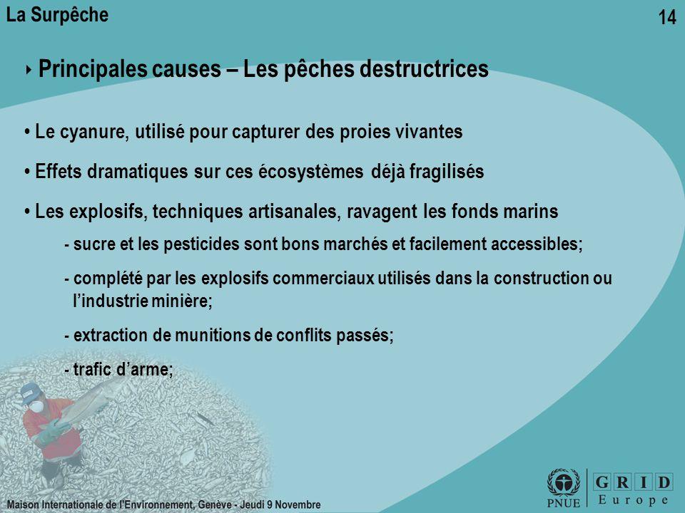 14 ‣ Principales causes – Les pêches destructrices Le cyanure, utilisé pour capturer des proies vivantes Effets dramatiques sur ces écosystèmes déjà f