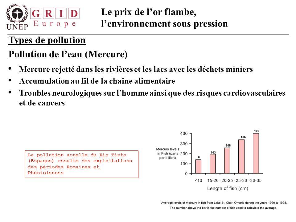 Le prix de l'or flambe, l'environnement sous pression Types de pollution Pollution de l'eau (Mercure) Mercure rejetté dans les rivières et les lacs av