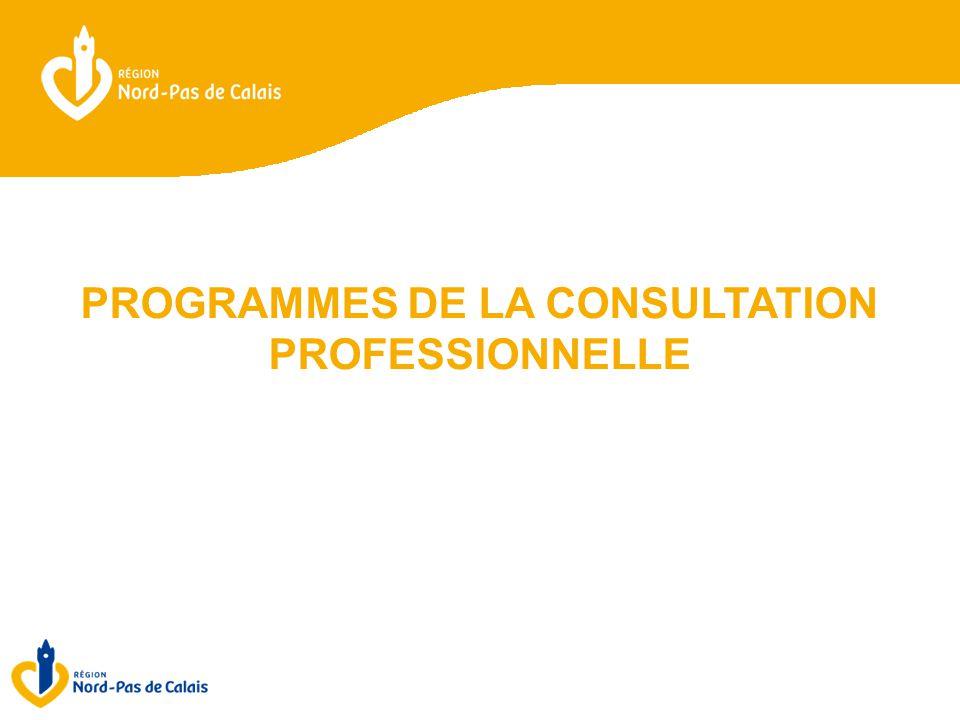 PROGRAMMES DE LA CONSULTATION PROFESSIONNELLE