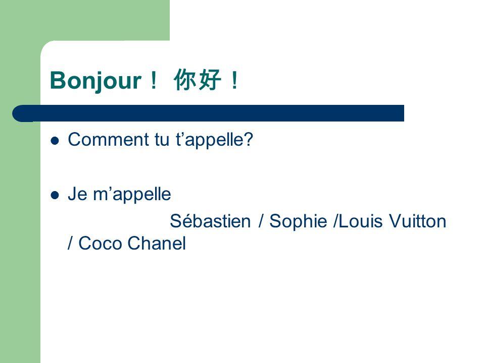 Bonjour ! 你好! Comment tu t'appelle? Je m'appelle Sébastien / Sophie /Louis Vuitton / Coco Chanel