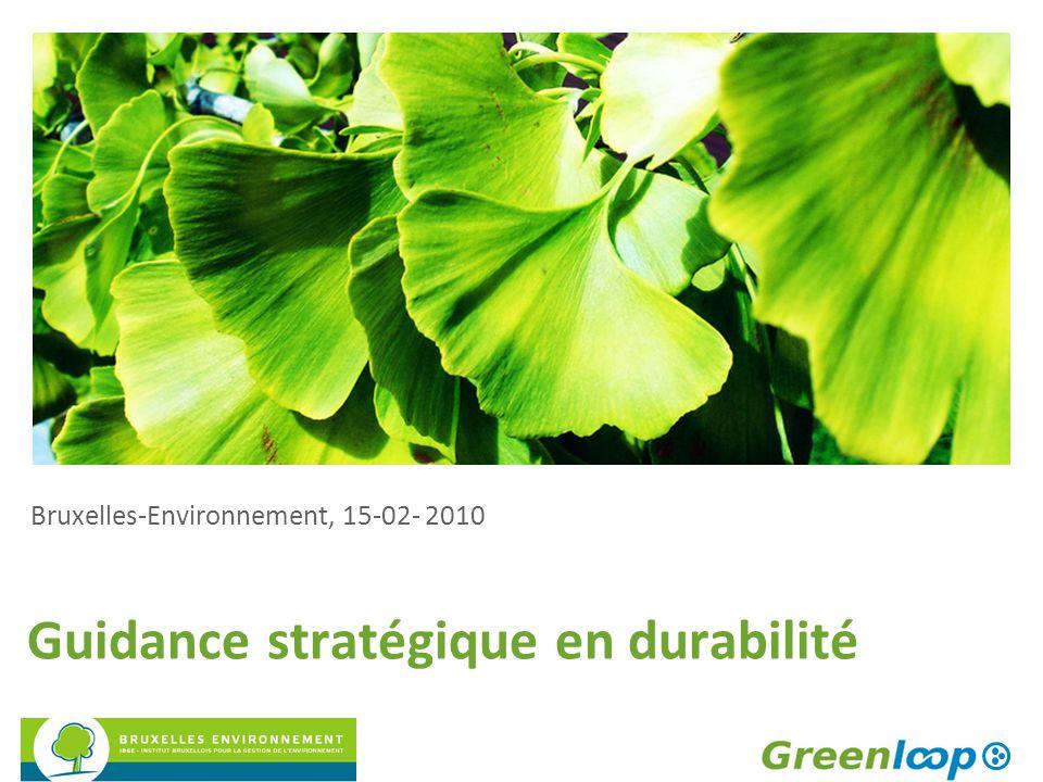 Guidance stratégique en durabilité Bruxelles-Environnement, 15-02- 2010