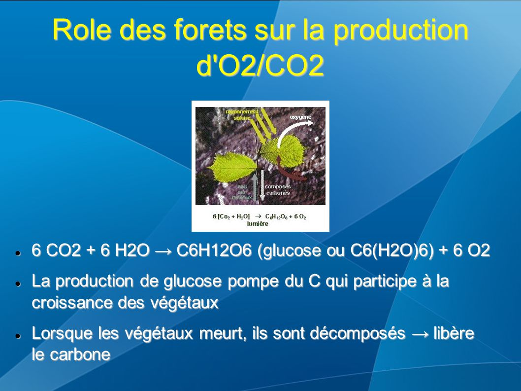 Role des forets sur la production d O2/CO2 6 CO2 + 6 H2O → C6H12O6 (glucose ou C6(H2O)6) + 6 O2 6 CO2 + 6 H2O → C6H12O6 (glucose ou C6(H2O)6) + 6 O2 La production de glucose pompe du C qui participe à la croissance des végétaux La production de glucose pompe du C qui participe à la croissance des végétaux Lorsque les végétaux meurt, ils sont décomposés → libère le carbone Lorsque les végétaux meurt, ils sont décomposés → libère le carbone