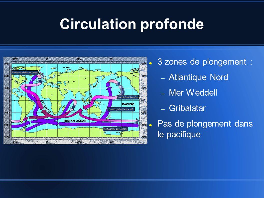 Circulation profonde 3 zones de plongement :  Atlantique Nord  Mer Weddell  Gribalatar Pas de plongement dans le pacifique