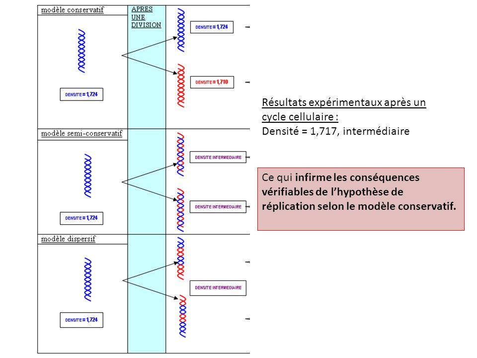 Ce qui infirme les conséquences vérifiables de l'hypothèse de réplication selon le modèle dispersif.