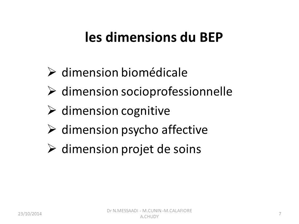 les dimensions du BEP  dimension biomédicale  dimension socioprofessionnelle  dimension cognitive  dimension psycho affective  dimension projet de soins Dr N.MESSAADI - M.CUNIN -M.CALAFIORE A.CHUDY 23/10/20147