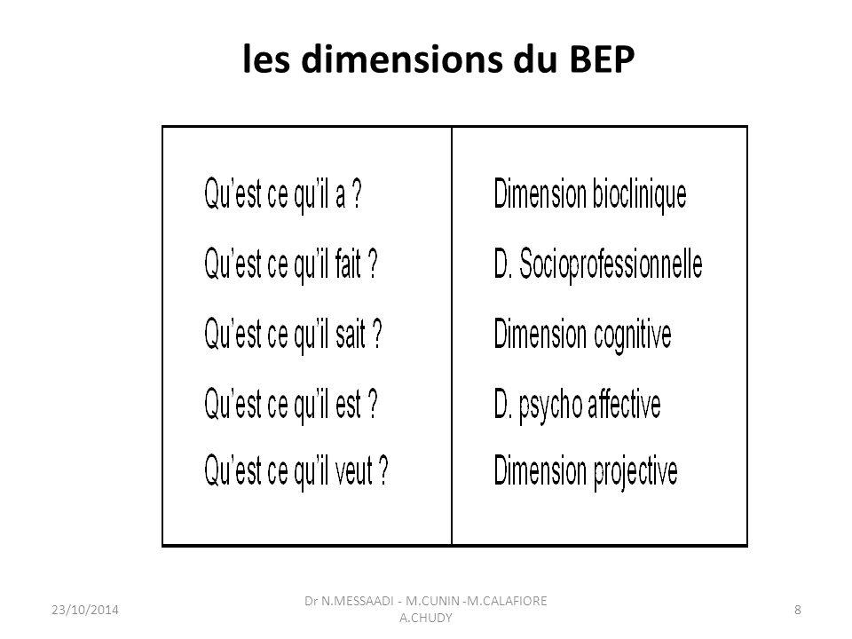 les dimensions du BEP Dr N.MESSAADI - M.CUNIN -M.CALAFIORE A.CHUDY 23/10/20148