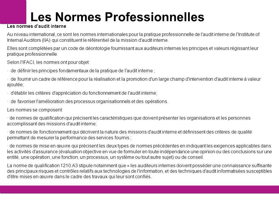 Les Normes Professionnelles Les normes d'audit interne Au niveau international, ce sont les normes internationales pour la pratique professionnelle de