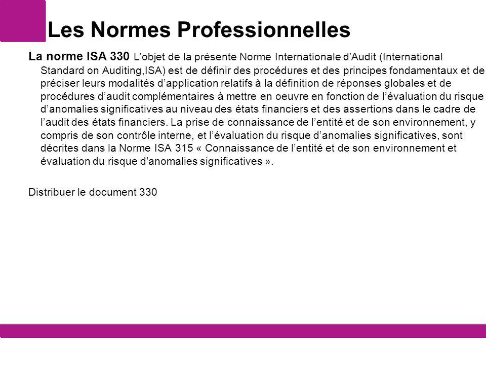 Les Normes Professionnelles Les normes professionnelles nationales En France, c est la CNCC (Compagnie nationale des commissaires aux comptes) qui réalise le référentiel normatif homologué applicable à la profession française.