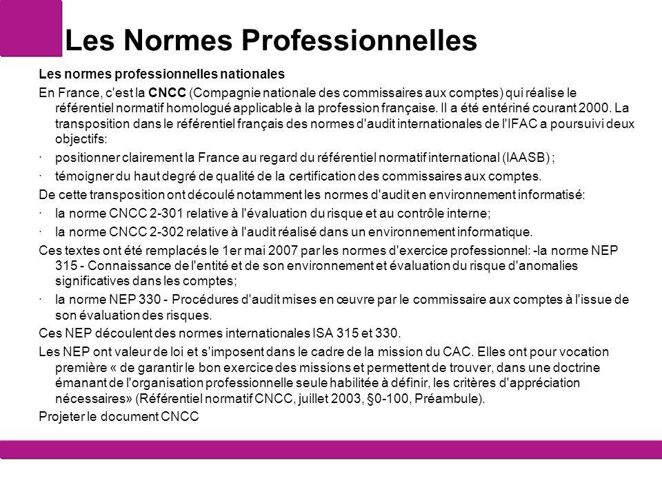 Les Normes Professionnelles Les normes professionnelles nationales En France, c'est la CNCC (Compagnie nationale des commissaires aux comptes) qui réa