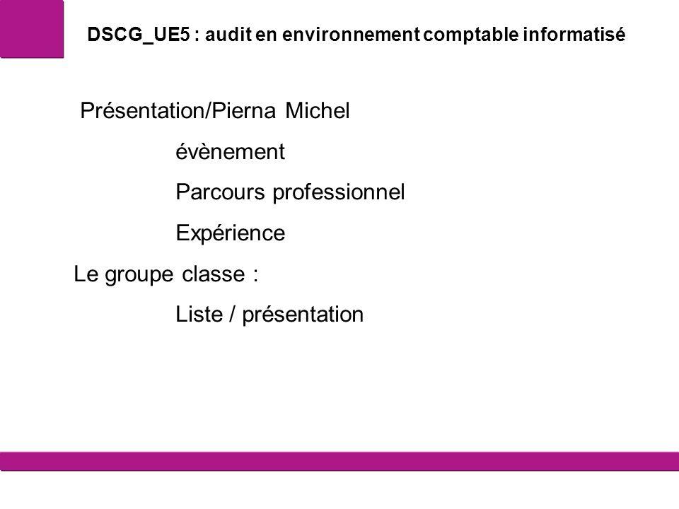 DSCG_UE5 : audit en environnement comptable informatisé Présentation/Pierna Michel évènement Parcours professionnel Expérience Le groupe classe : List