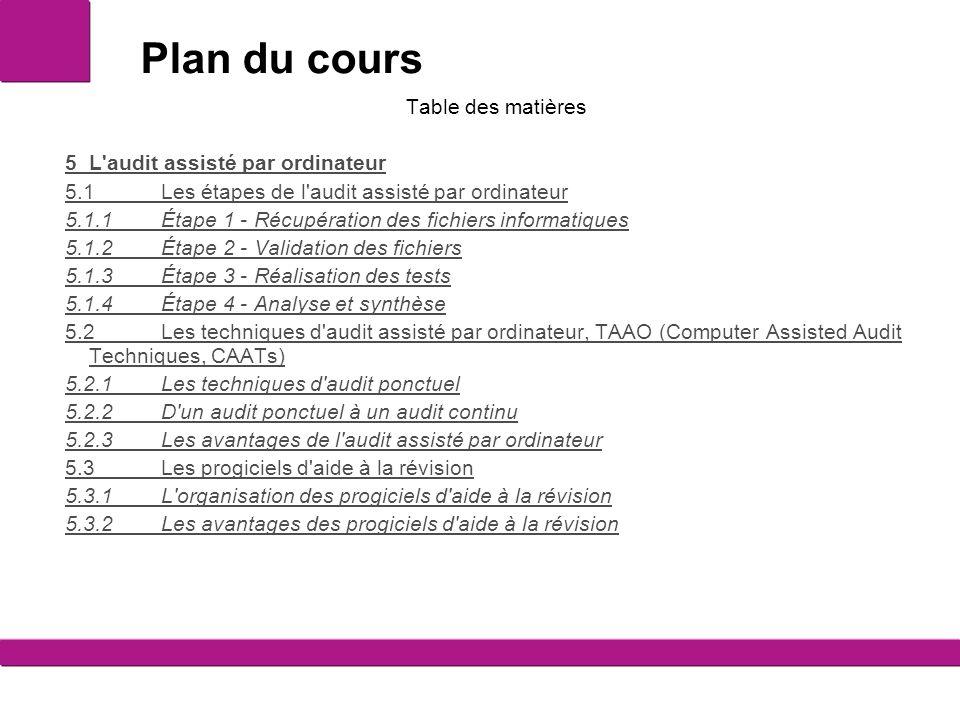 Plan du cours Table des matières 5L'audit assisté par ordinateur 5.1Les étapes de l'audit assisté par ordinateur 5.1.1Étape 1 - Récupération des fichi