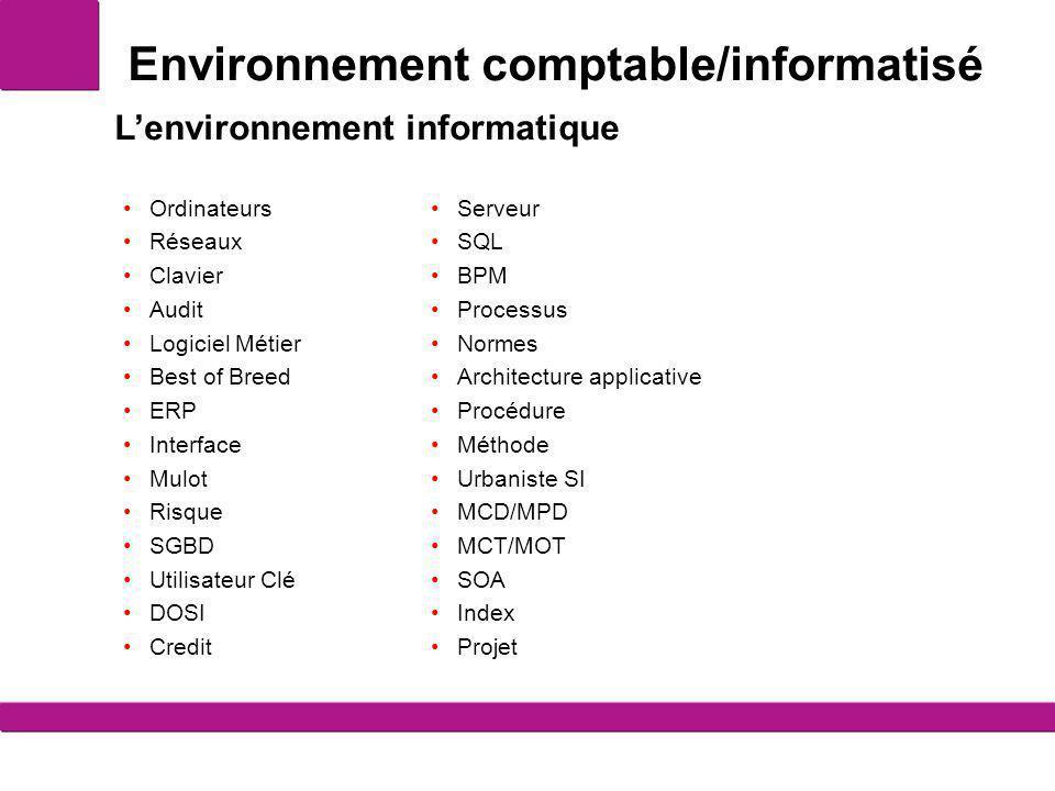 Environnement comptable/informatisé Ordinateurs Réseaux Clavier Audit Logiciel Métier Best of Breed ERP Interface Mulot Risque SGBD Utilisateur Clé DO