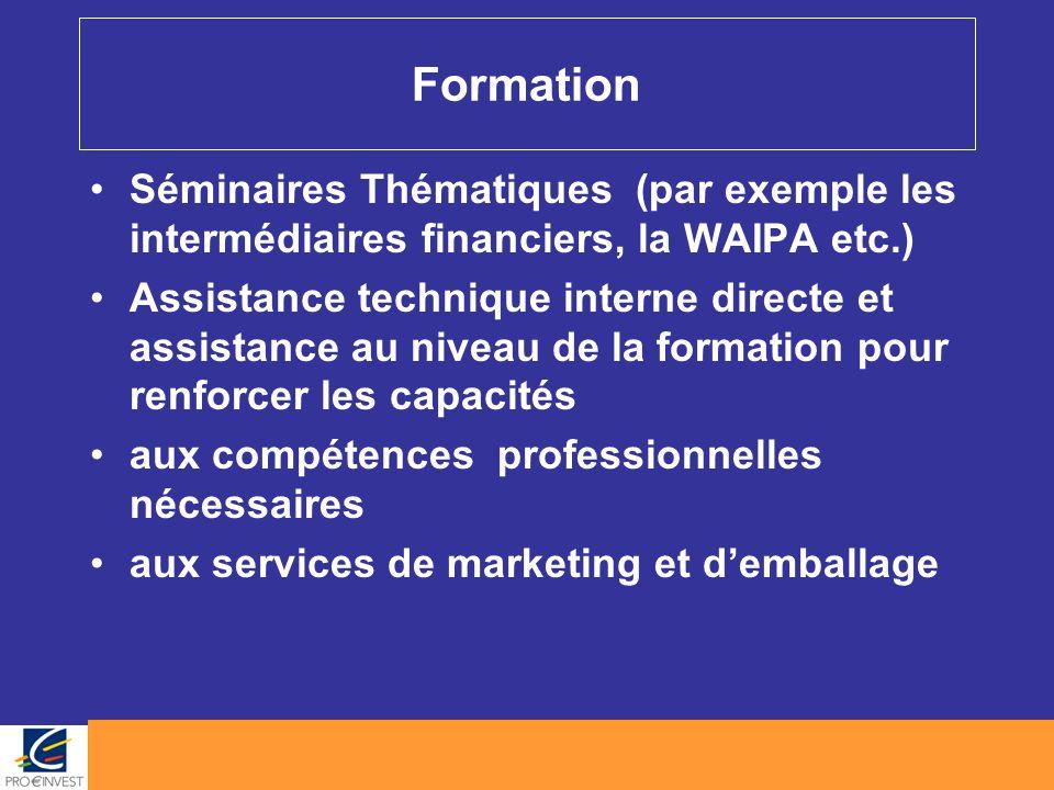Formation Séminaires Thématiques (par exemple les intermédiaires financiers, la WAIPA etc.) Assistance technique interne directe et assistance au nive