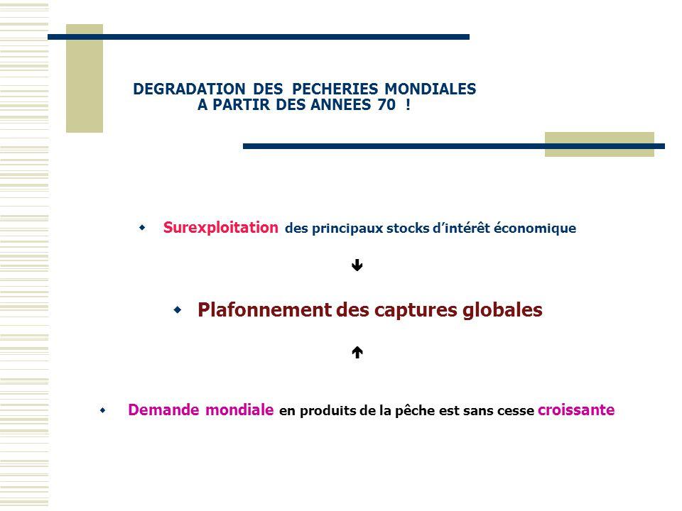 DEGRADATION DES PECHERIES MONDIALES A PARTIR DES ANNEES 70 !  Surexploitation des principaux stocks d'intérêt économique   Plafonnement des capture