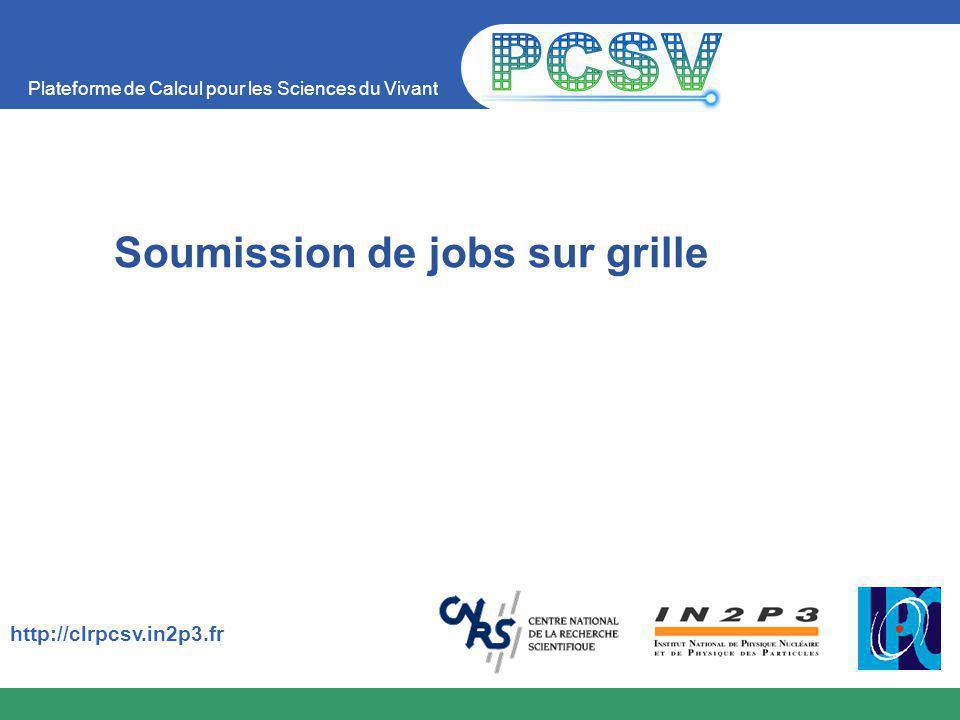 Plateforme de Calcul pour les Sciences du Vivant http://clrpcsv.in2p3.fr Soumission de jobs sur grille