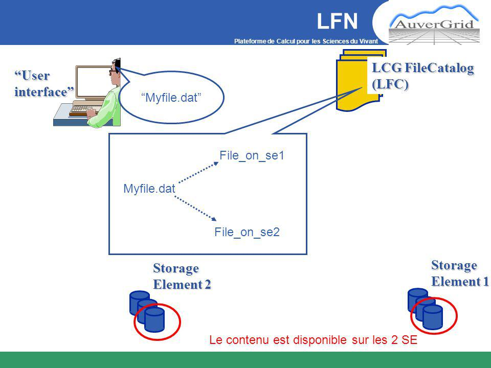 Plateforme de Calcul pour les Sciences du Vivant LFNStorage Element 1 User interface LCG FileCatalog (LFC) Storage Element 2 Le contenu est disponible sur les 2 SE Myfile.dat Myfile.dat File_on_se1 File_on_se2