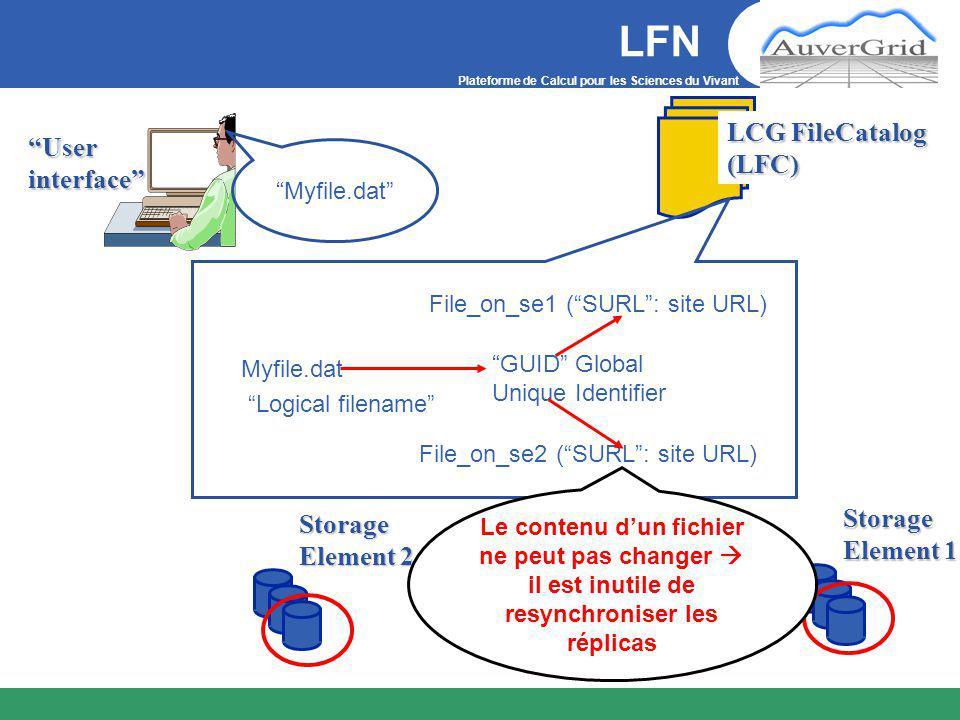 Plateforme de Calcul pour les Sciences du Vivant Storage Element 1 User interface LCG FileCatalog (LFC) Storage Element 2 Myfile.dat Myfile.dat Logical filename File_on_se1 ( SURL : site URL) File_on_se2 ( SURL : site URL) GUID Global Unique Identifier LFN Le contenu d'un fichier ne peut pas changer  il est inutile de resynchroniser les réplicas