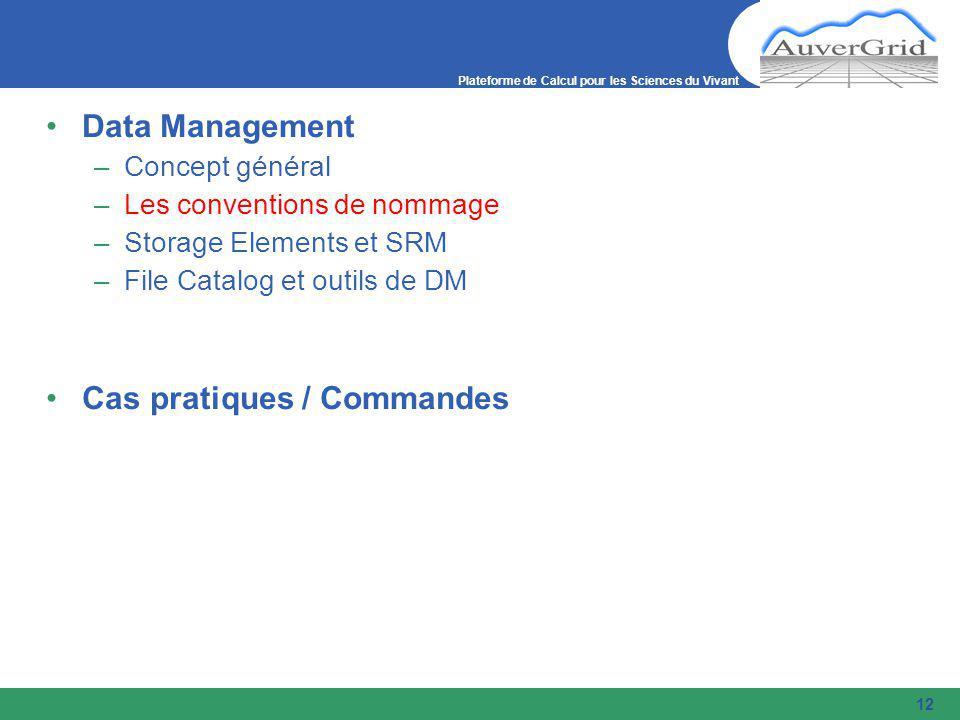 Plateforme de Calcul pour les Sciences du Vivant 12 Data Management –Concept général –Les conventions de nommage –Storage Elements et SRM –File Catalog et outils de DM Cas pratiques / Commandes