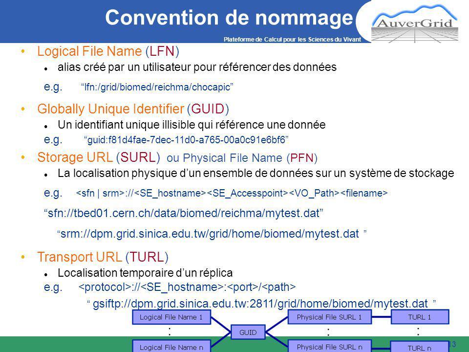 Plateforme de Calcul pour les Sciences du Vivant 13 Convention de nommage Logical File Name (LFN) alias créé par un utilisateur pour référencer des données e.g.